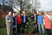 Tree planting sees start of better times for Orford Park